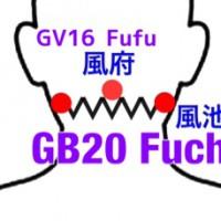 【ツボ】Fuchi(風池)